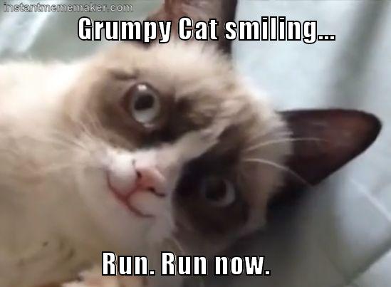 Grumpy Cat Smiling Smiling Grumpy Cat Instant Meme Maker Grumpy Cat Funny Cats And Dogs Cat Gif