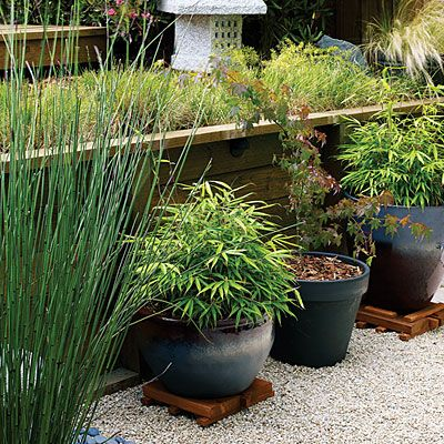 58 Cool Container Gardens