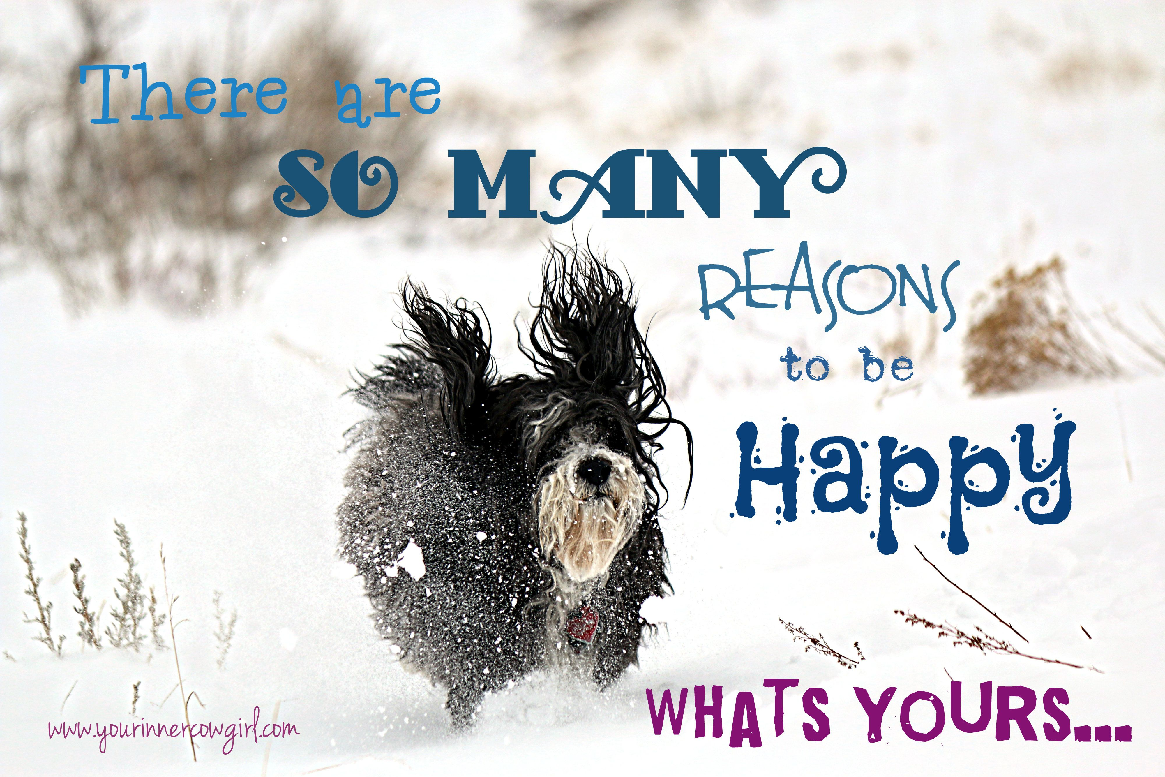 There are so many reasons to be happy...what's yours