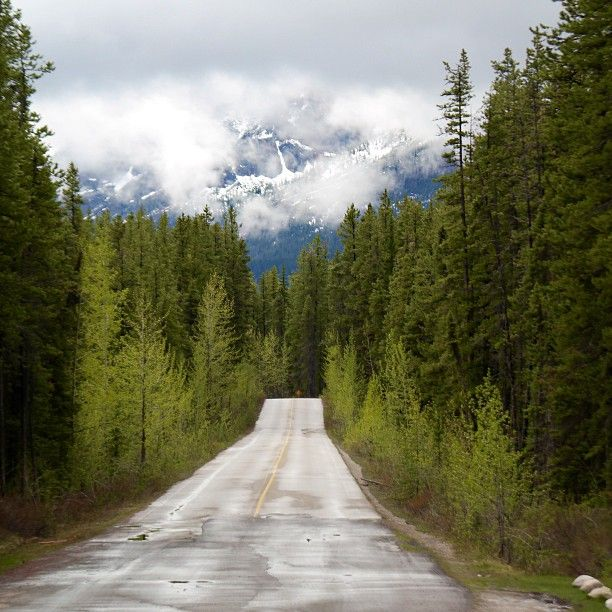 On The Road, Jasper. Photo By Jae Jin Park. #ExploreCanada