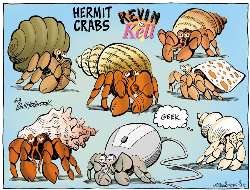 Hermit Crabs by Bill Holbrook