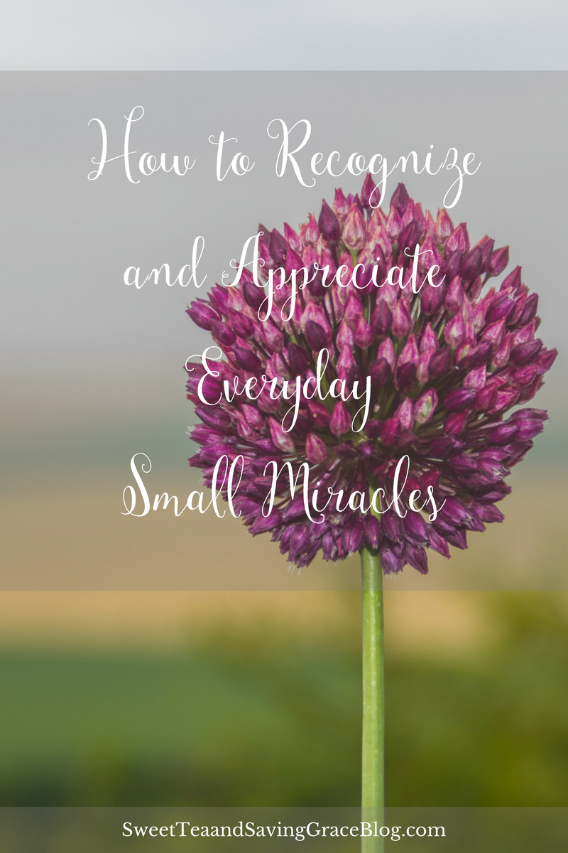 Paying attention to the everyday small miracles happening all around us is vital to our wellbeing. http://sweetteaandsavinggraceblog.com/how-to-recognize-and-appreciate-the-everyday-small-miracles/?utm_campaign=coschedule&utm_source=pinterest&utm_medium=Sweet%20Tea%2C%20LLC&utm_content=How%20to%20Recognize%20and%20Appreciate%20the%20Everyday%20Small%20Miracles