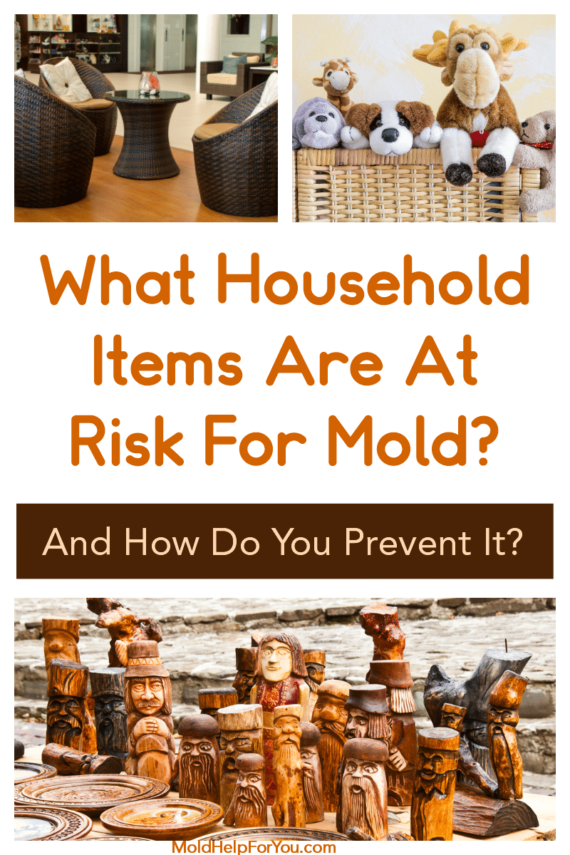 Do You Know Where You Are Exposed To Mold? | Mold ...