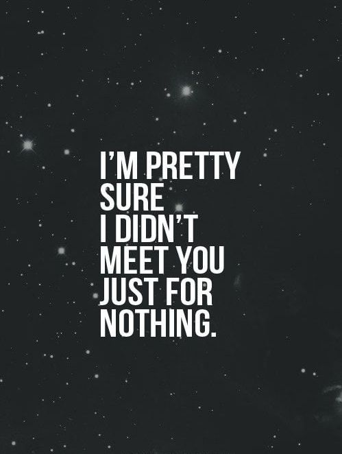 The Best Love Quotes To Melt A Heart Amusing I'm Pretty Sure  Tap To See More Love Quotes That Will Definitely