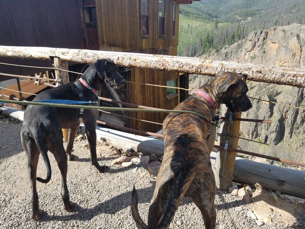 Our Travel To Last Chance Mine In Creede Colorado Hennessey And