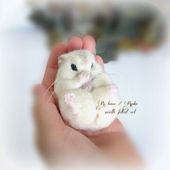 Wool felt Djangarian hamster doll | wool felt | R's house / Ryoko | Handmade mail order / sale Creema