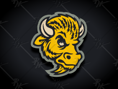 Vintage Colorado Buffaloes Update Classic Colors Colorado Buffaloes Vintage Classic