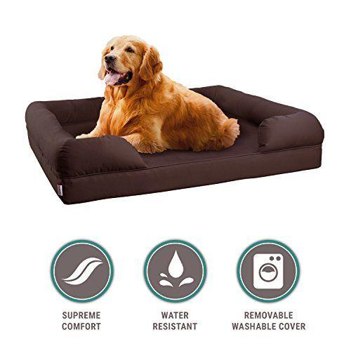 Pleasant Dog Bed American Kennel Club Petlo Orthopedic Pet Sofa Bed Creativecarmelina Interior Chair Design Creativecarmelinacom
