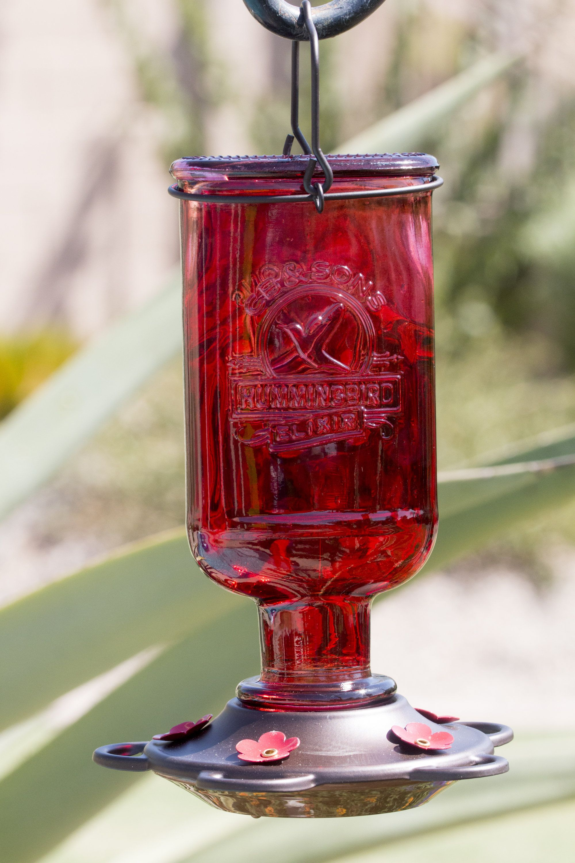 Beautiful red antique bottle hummingbird feeder includes 5