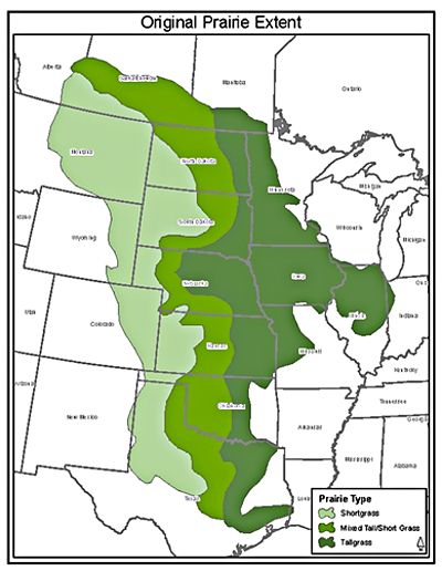 Prairie Map via Google | Las Praderas in 2018 | Pinterest | Great ...