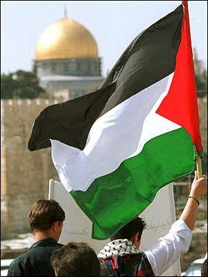 Palestine  shared by Marwa Difallah on We Heart It