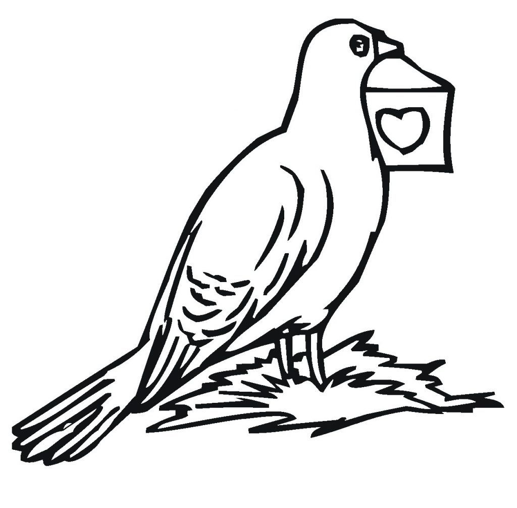 Free Printable Pigeon Coloring Pages For Kids Bird Coloring Pages Coloring Pages To Print Animal Coloring Pages