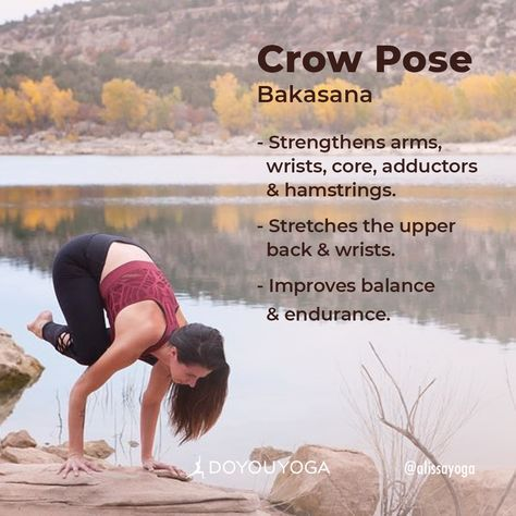 the ultimate guide to crow pose with images  crow pose