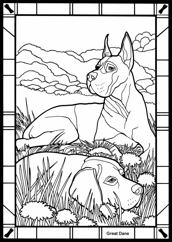 Dogs Stained Glass Coloring Book Dover Publications Dog Coloring