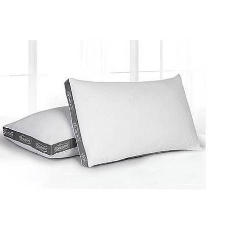 Beautyrest Silver Luxurious Spa Comfort Pillow Set Of 2 Multiple Sizes Walmart Com Luxury Spa Resort Luxury Spa Pillows