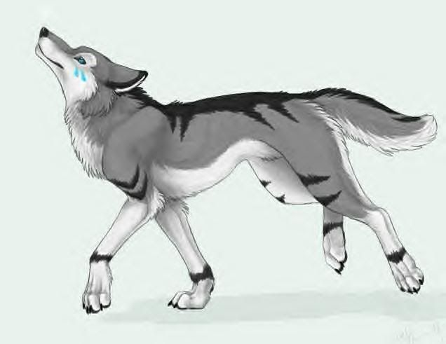 Anime Cartoon Wolf Wolf Artwork