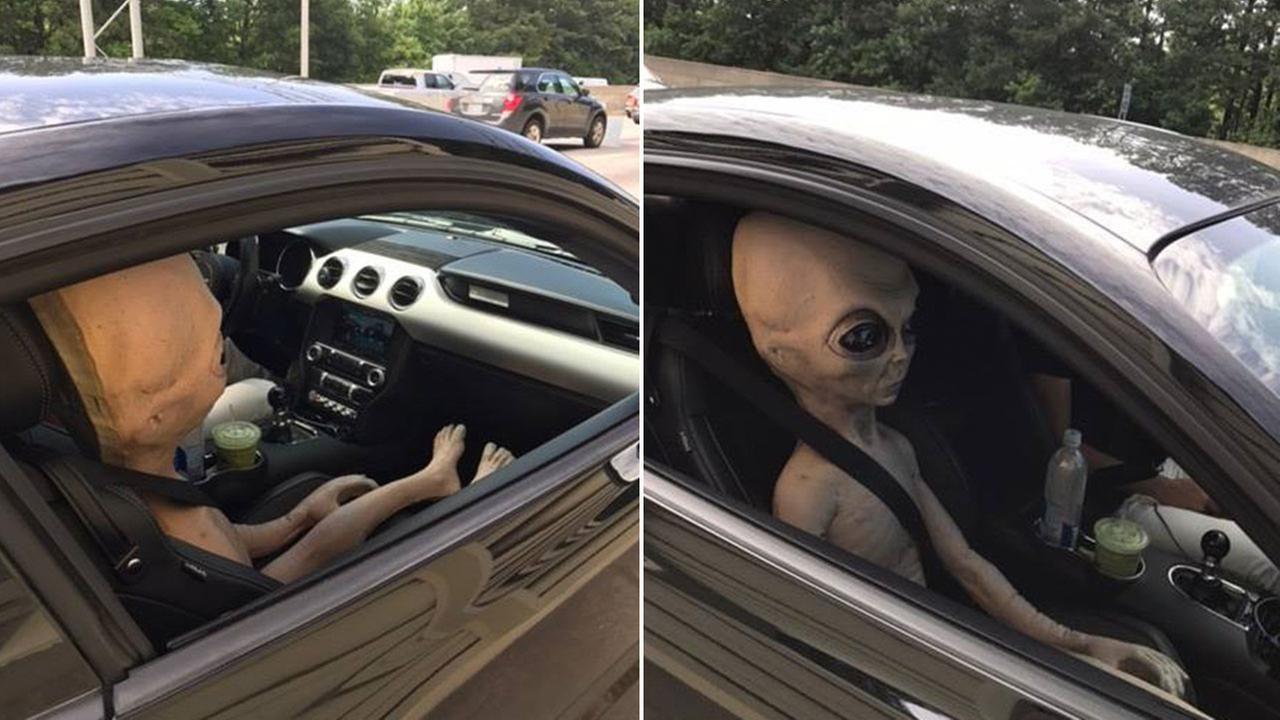 Alien passenger discovered in car pulled over for speeding   oc-sign ...