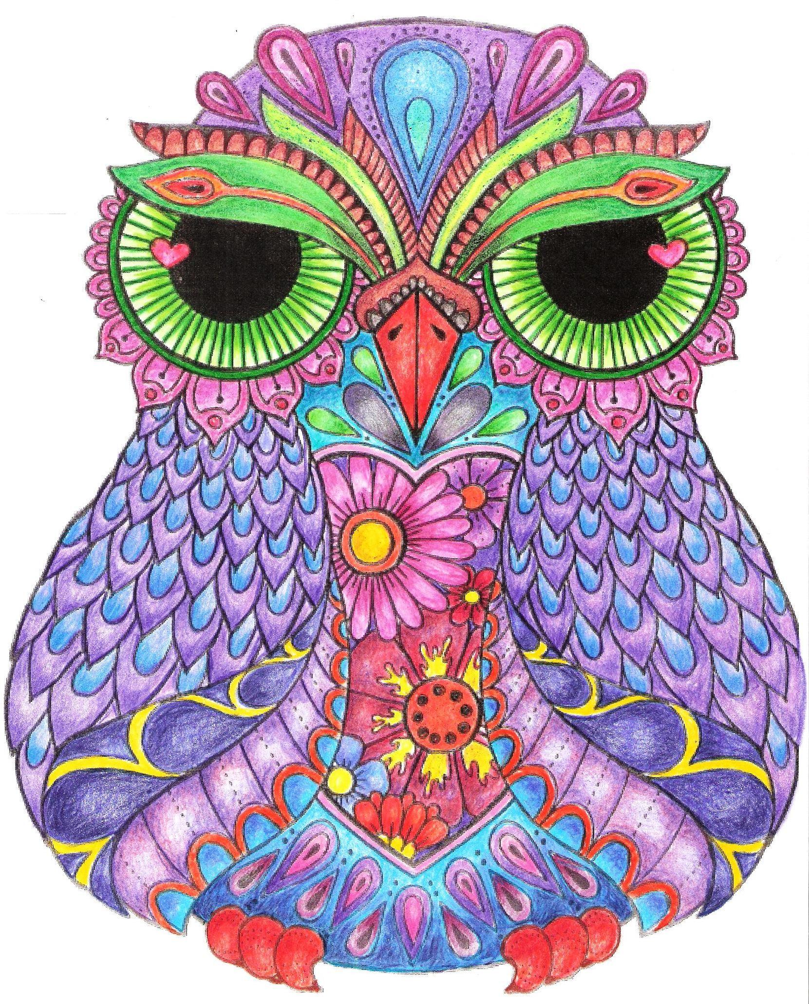 43++ Owl phoenix info