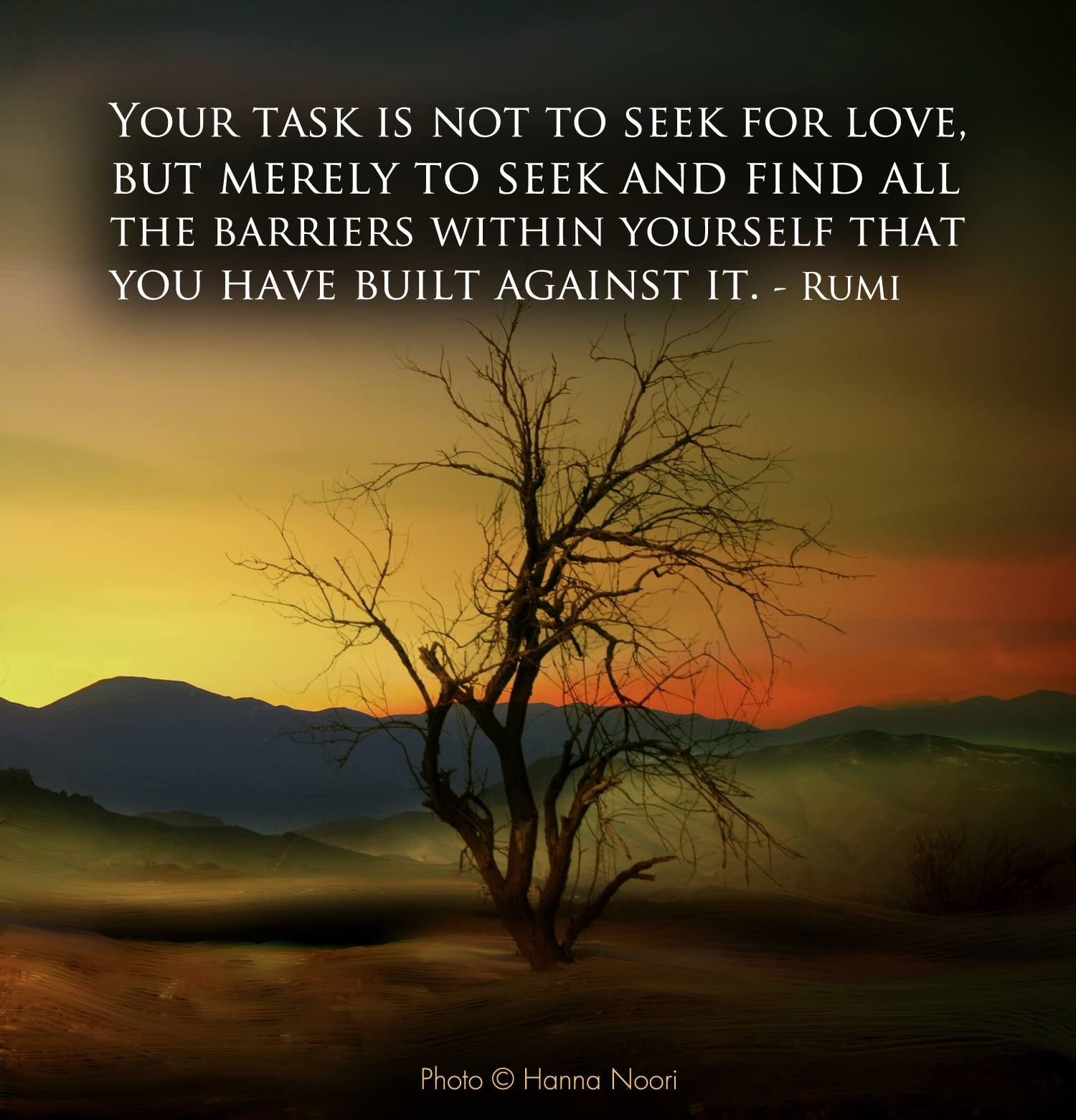 Your task is not to seek for love,  But merely to seek and find all  the barriers within yourself that  you have built against it