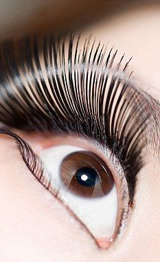 a1f6cb18147 Celebrity trend for REAL mink eyelashes sweeps UK salons | My Style ...