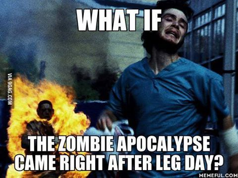 Leg Day Meme Funny : Happy anniversary meme funny anniversary images and pictures