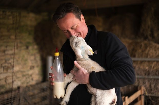 Pandering to animal rights extremists will get MPs rejected, not elected.
