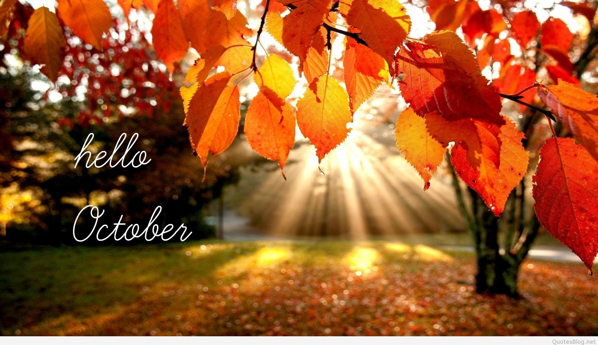 Image Hello October Picture And Quotes