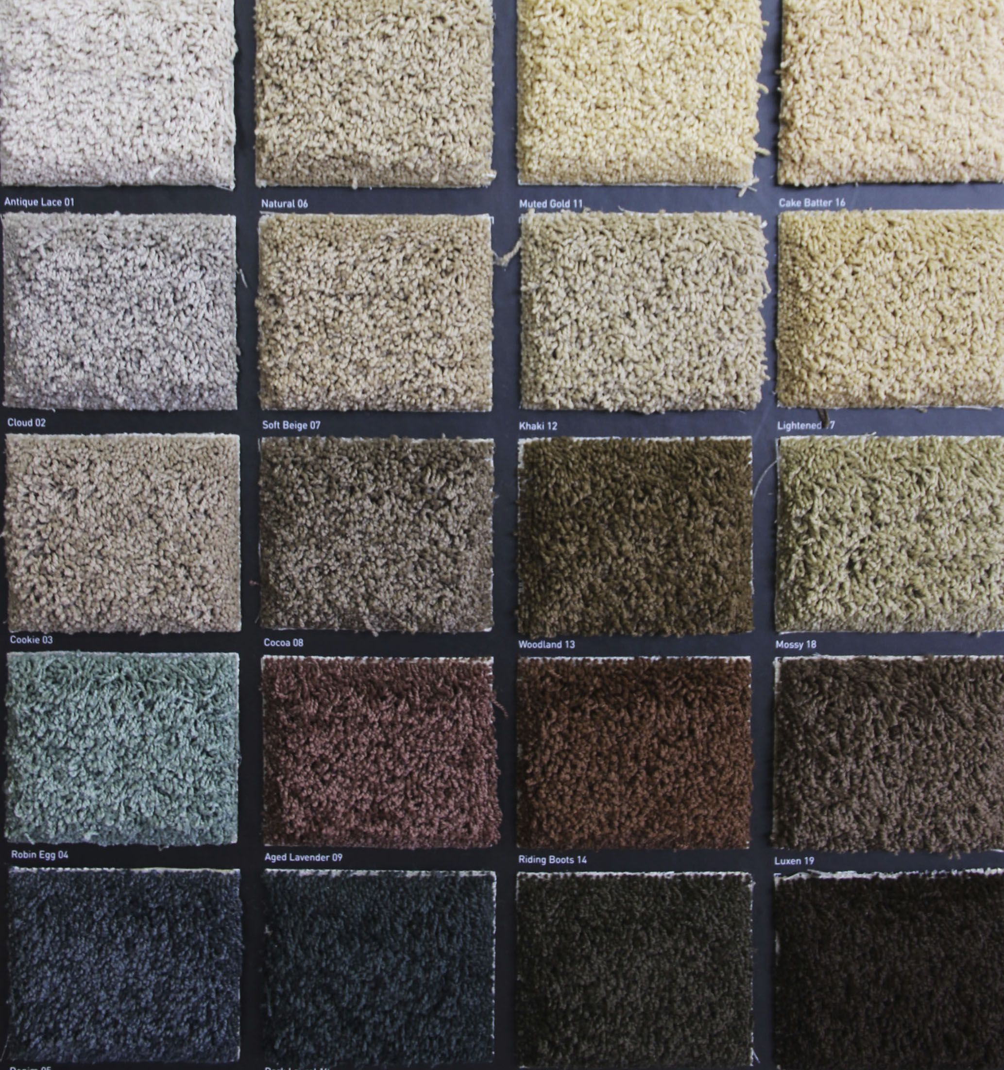 stainmaster carpet protection - Stainmaster Carpet
