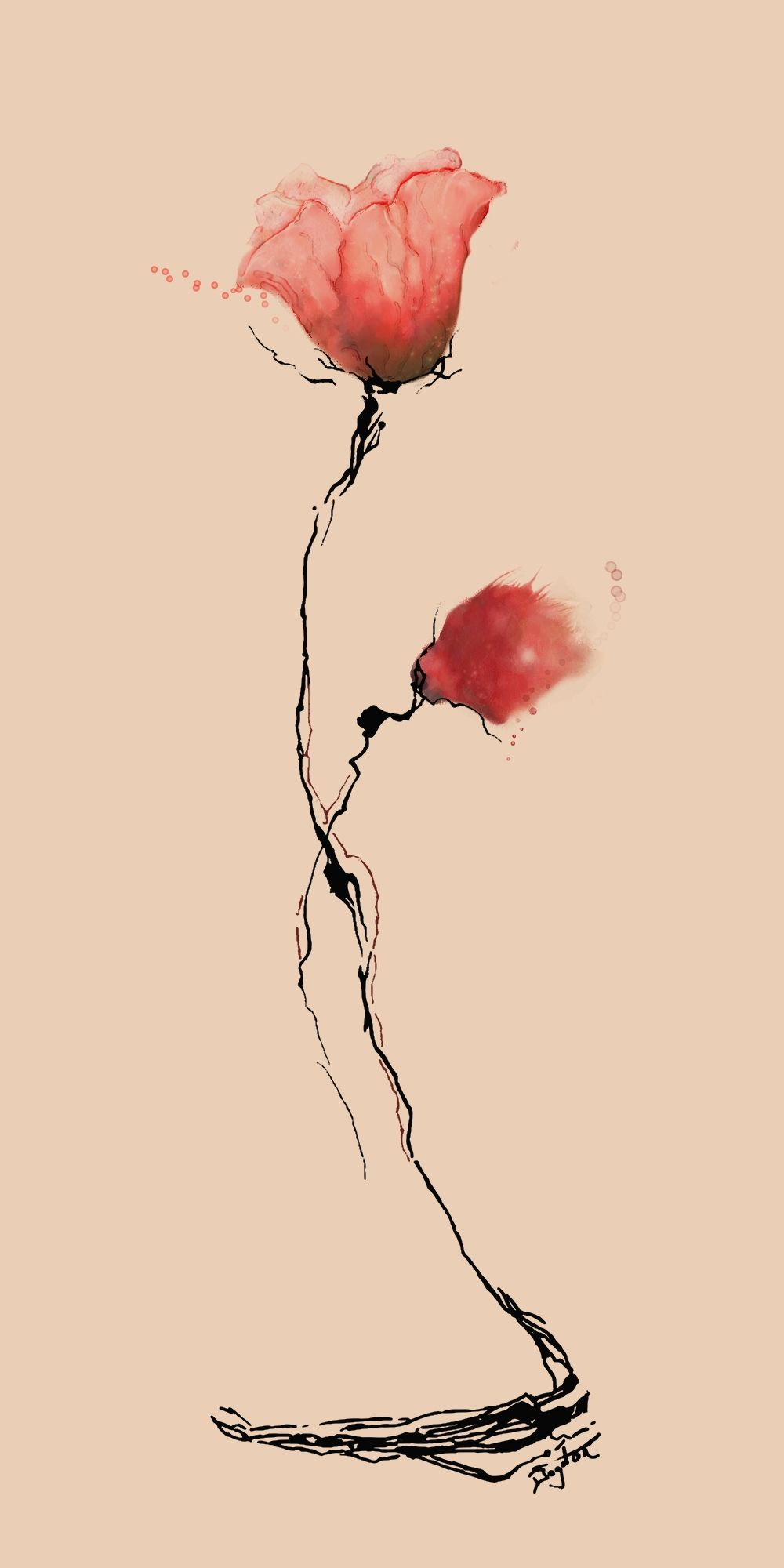 Poppy Flower Watercolor By Boogiemanu On Deviantart Ink