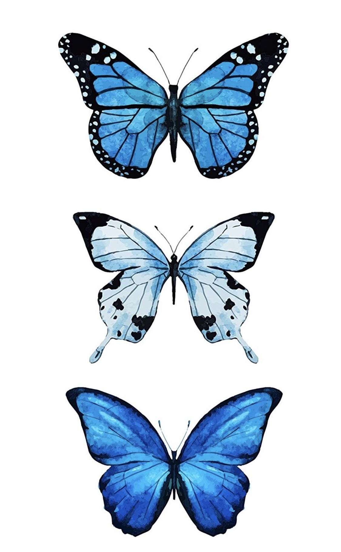 e16168b9c88667110c553d2325fa4aee » Butterfly Drawing Aesthetic