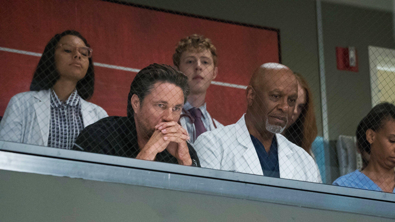 Grey\'s Anatomy - Season 14 Episode 1 : Break Down the House | Tv ...