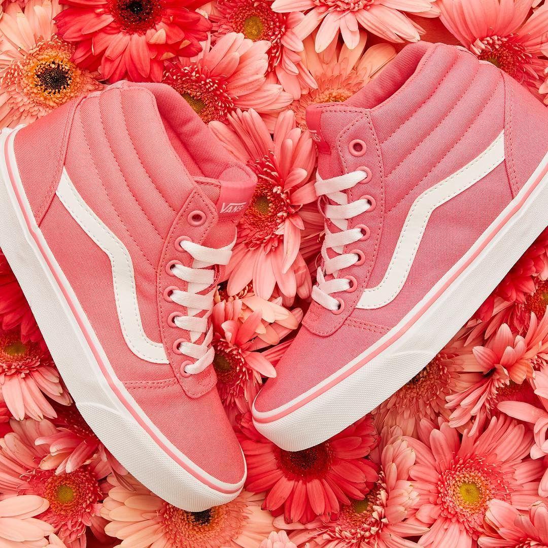DSW Designer Shoe Warehouse on