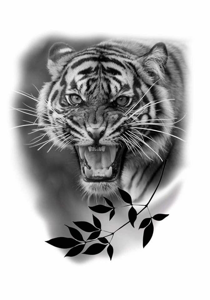 тигр тату эскиз картинки сколько костей