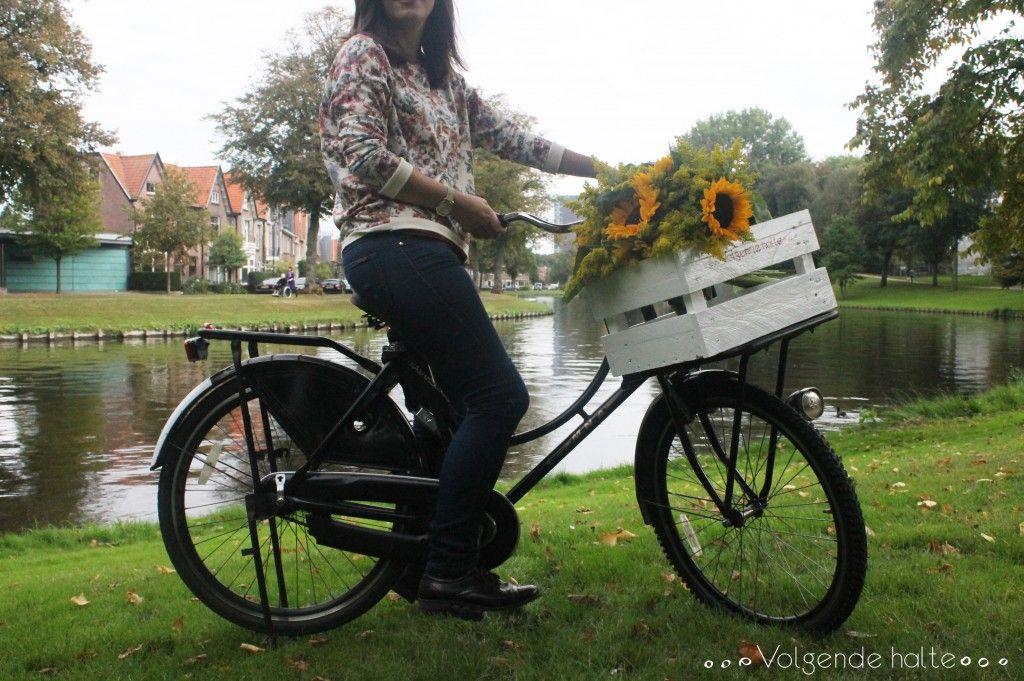 DIY: Cesta para bicicleta • Volgende halte