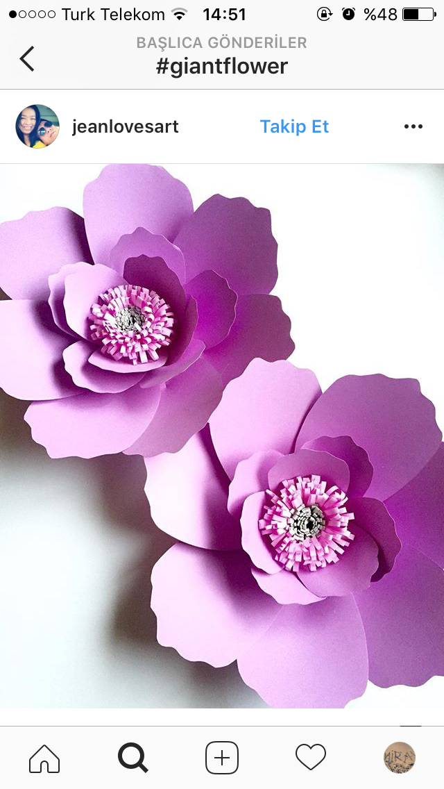 Miray Tanil Adli Kullanicinin Giant Flower Panosundaki Pin