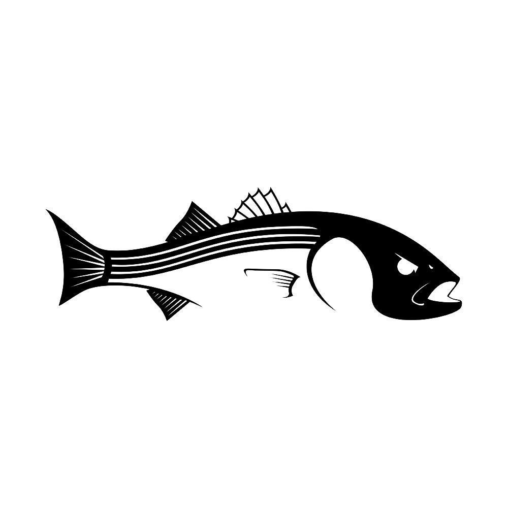 WHITE Vinyl Decal Bass with spinner fish fishing boat truck bait sticker fun