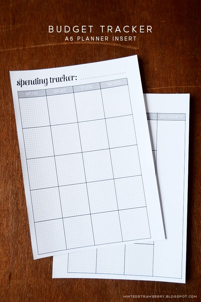 minted strawberry download this free printable budget tracker