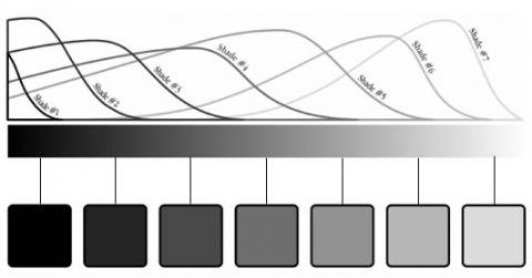 Escala De Valores De Claroscuro Art Audi Logo