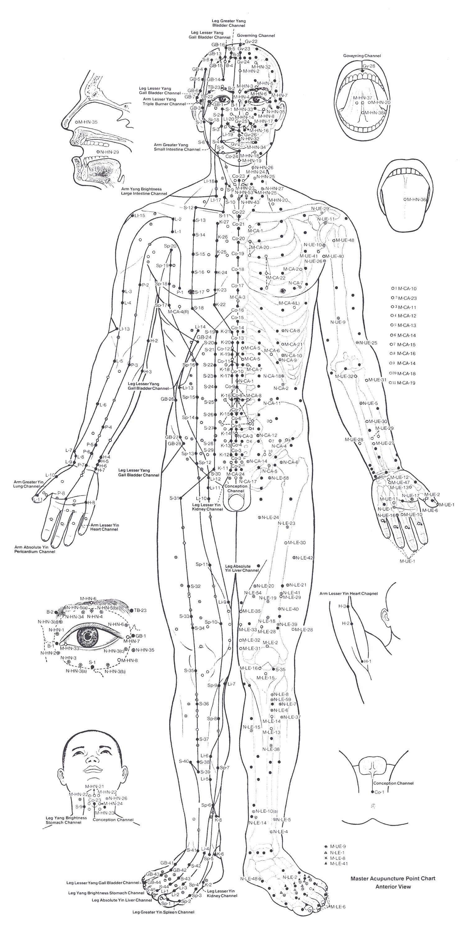 Acupuncture Points Chart Front With Images