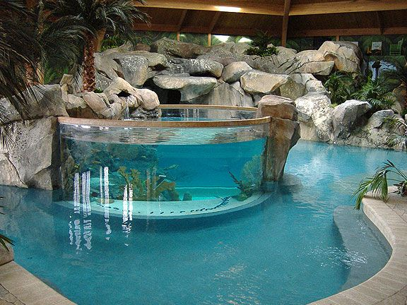 aquarium within a pool jr would love - Cool Indoor Pools With Fish