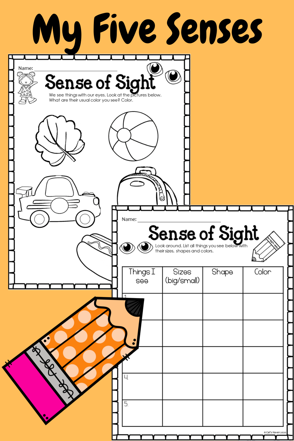 My Five Senses Flash Cards And Worksheets My Five Senses Five Senses Worksheet Fun Worksheets [ 1500 x 1000 Pixel ]