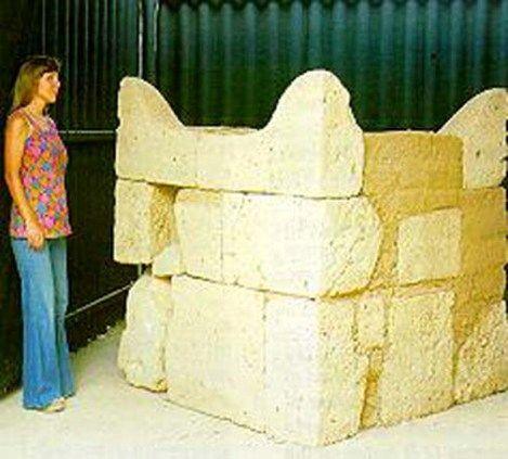 Bilderesultat for the horned altar