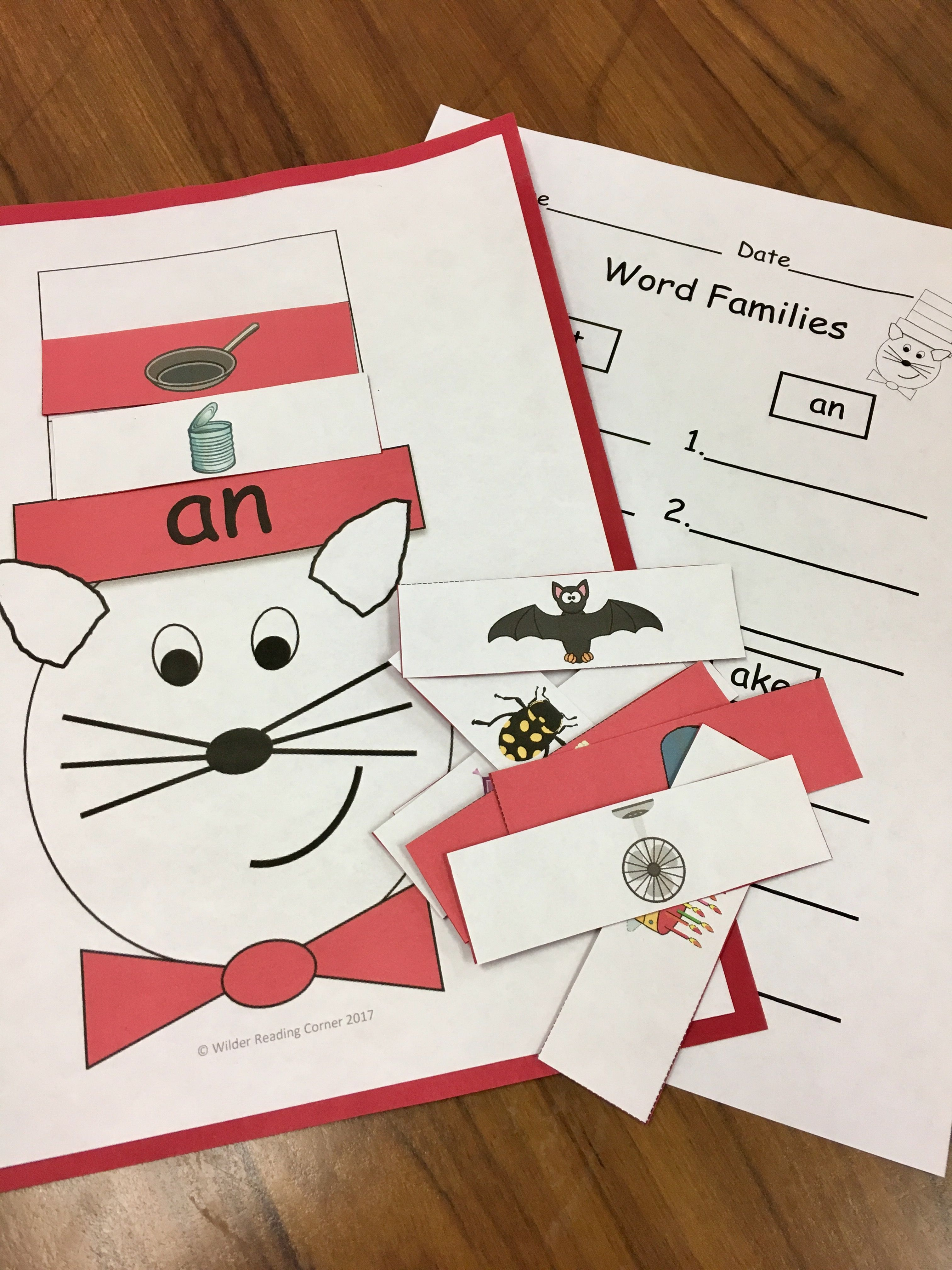 Dr Seuss Word Family Practice Cat In The Hat