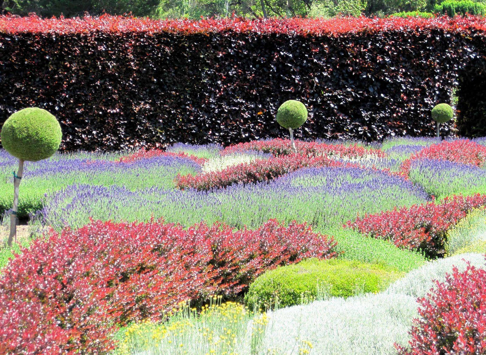 Filoli Gardens Beautiful Gardens Wonderful Flowers Amazing Flowers