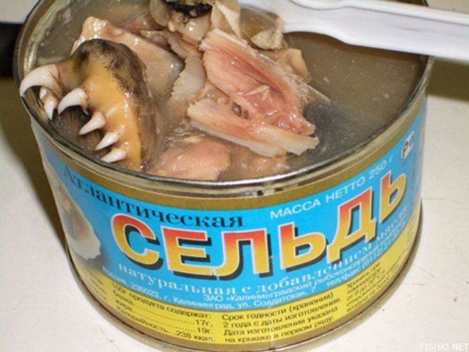 Canned Fish Mouth - wasn't really sure where to pin this O_O
