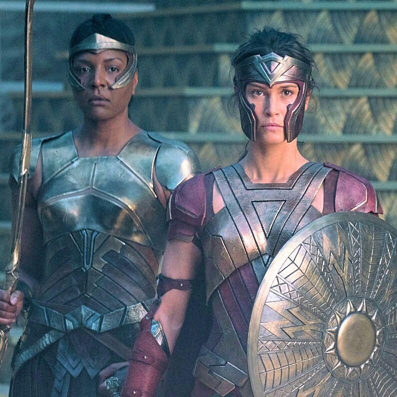 The Amazons Amazons Women Warriors Wonder Woman Movie Warrior Woman