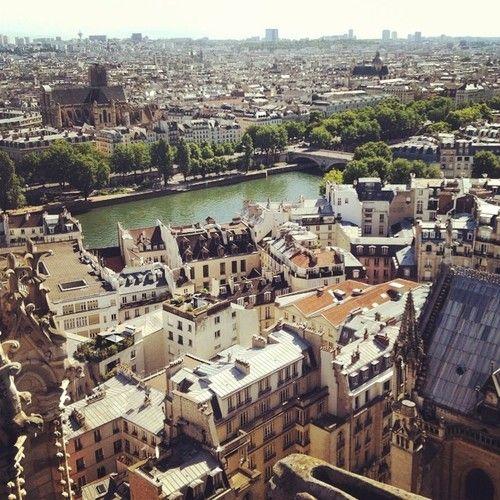 pinkguacamole:  The rooftops of L'Île de la Cité in the heart of Paris