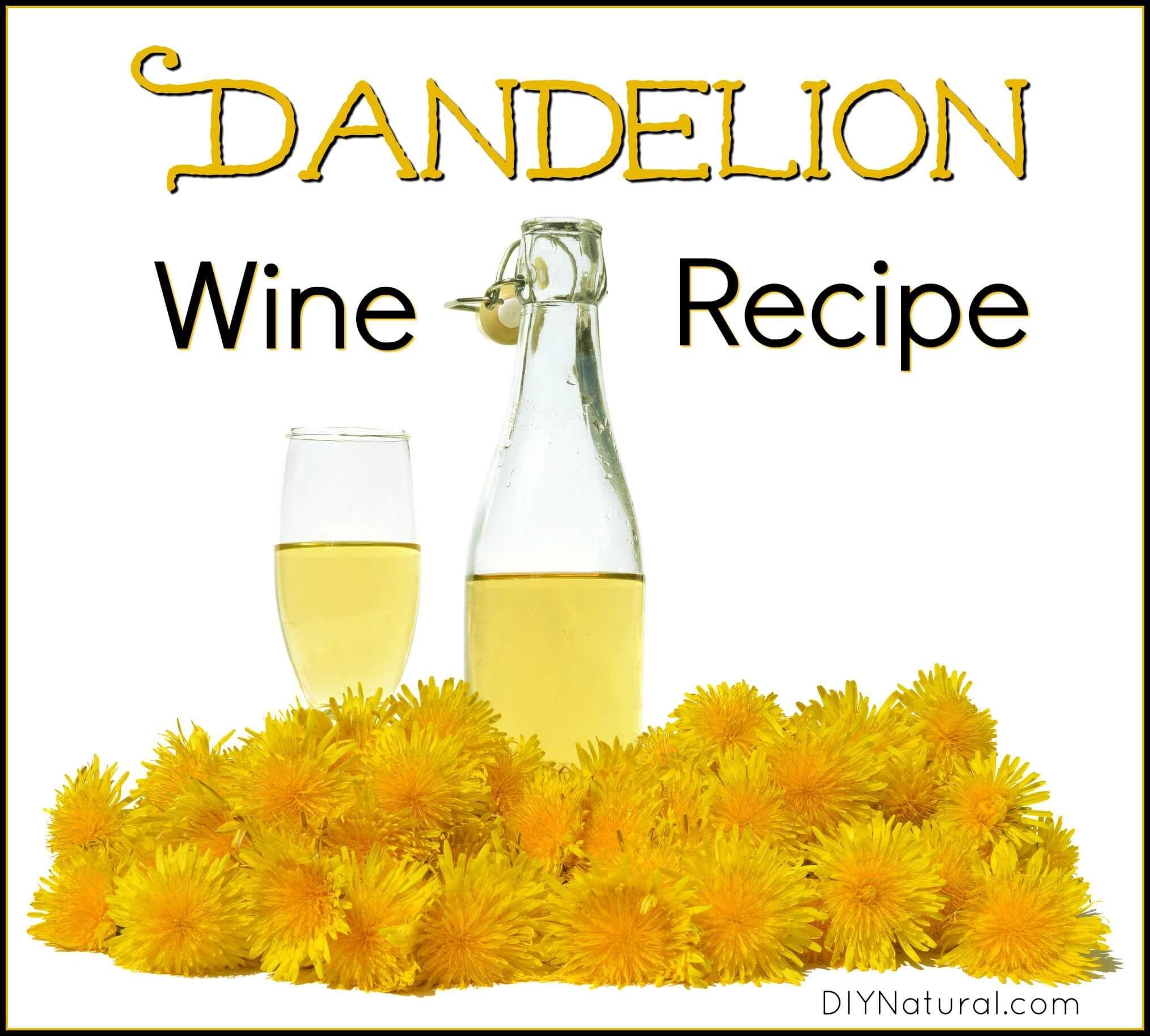 How to Make Dandelion Wine (Recipe) - WellPreserved