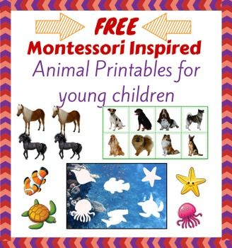 montessori inspired free animal printables for young children beautiful colourful animal. Black Bedroom Furniture Sets. Home Design Ideas