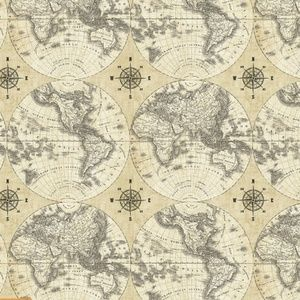 Sue Schlabach - World Maps - Flat World in Linen Possible backing for Baby As quilt